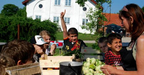 Børn får appetit på sund mad, når de er med i Haver til Maver, viser forskning fra DPU. Foto: Ulla Skovsbøl