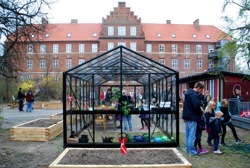 Det nye drivhus i skolegården på Amager Fælled Skole. Foto: Ulla Skovsbøl