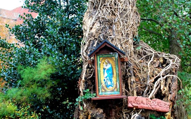 Mariatræet